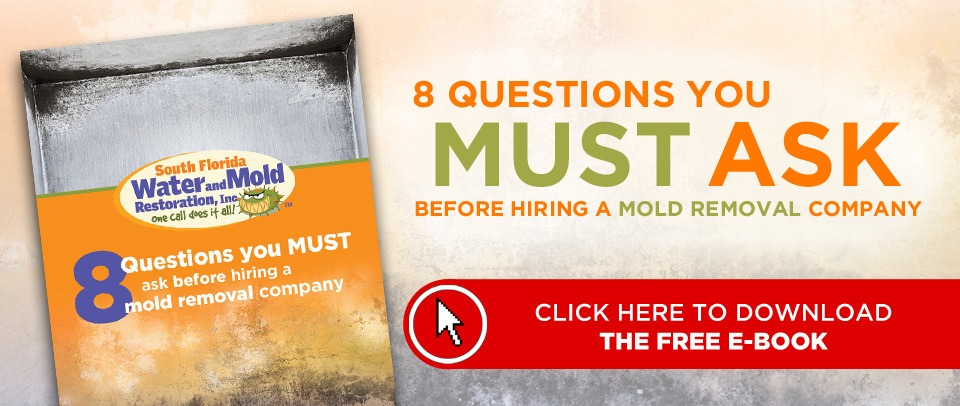 8 Questions to ask when hiring a mold company